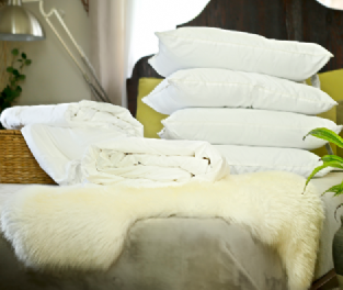 Double Euro size all-seasons mulberry silk-filled duvets and 4 silk-filled pillows