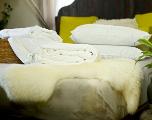 Double size all-seasons mulberry silk-filled duvets and 2 silk-filled pillows