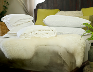 Double Euro size spring/autumn mulberry silk-filled duvet, silk-filled mattress topper and 2 silk-filled pillows