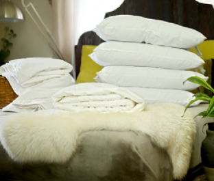 Double Euro size summer mulberry silk-filled duvet, silk-filled mattress topper and 4 silk-filled pillows