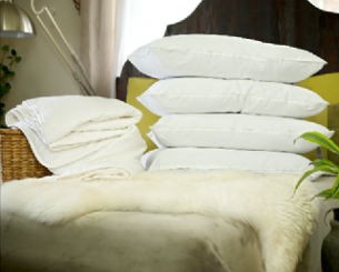 Queen size silk-filled mattress topper and 4 silk-filled pillows